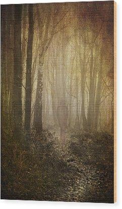 Stroll Through My Mind Wood Print by Meirion Matthias
