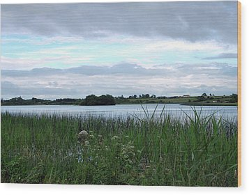 Wood Print featuring the photograph Strolling By The Lake by Terence Davis