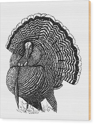 Strutting Gobbler Wood Print by Suzanne McKee