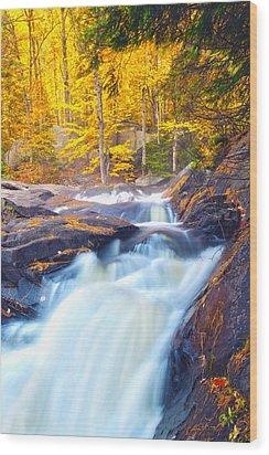 Stubbs Falls I Wood Print