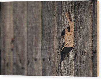 Wood Print featuring the photograph Stuck by Karol Livote