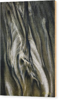 Wood Print featuring the photograph Study In Brown Abstract Sands by Rikk Flohr