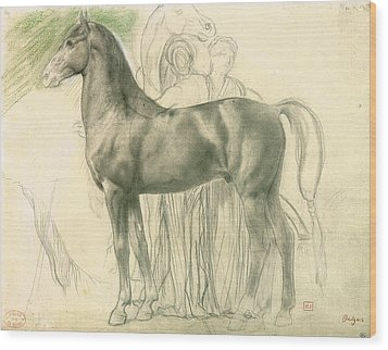 Study Of A Horse With Figures Wood Print by Edgar Degas