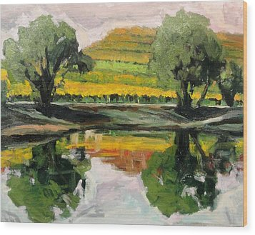 Study Of Reflections And Vineyard Wood Print by Kevin Davidson