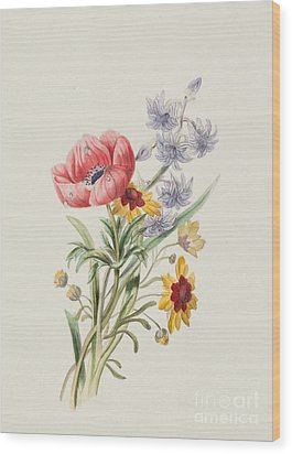Study Of Wild Flowers Wood Print by English School