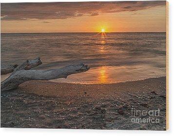 Stump Sunset Wood Print