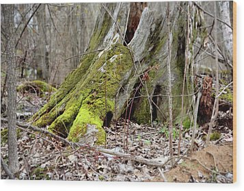Wood Print featuring the photograph Stump With Moss by Sean Seal