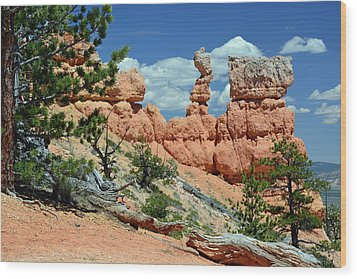 Wood Print featuring the photograph Stunning Bryce Canyon National Park Backcountry by Bruce Gourley