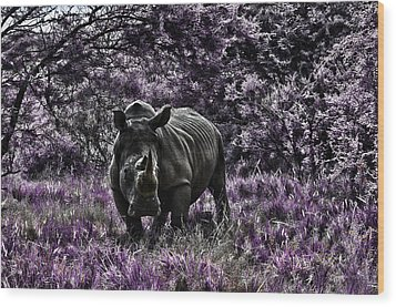 Styled Environment-the Modern Trendy Rhino Wood Print by Douglas Barnard