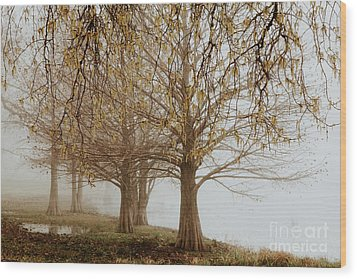 Wood Print featuring the photograph Sublime by Iris Greenwell