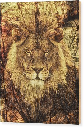 Subtle Lion Wood Print