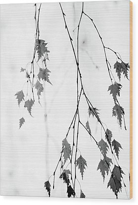 Wood Print featuring the photograph Subtle by Rebecca Cozart