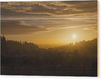 Suburban Golden Sunset Wood Print by David Gn