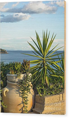 Succulents By The Sea Wood Print