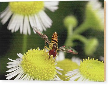 Sugar Bee Wings Wood Print