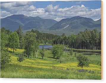 Sugar Hill Springtime Wood Print