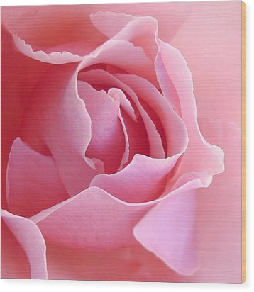 Sugar Of Rose Wood Print by Jacqueline Migell