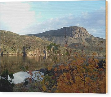 Wood Print featuring the photograph Sugarloaf Hill In Autumn by Barbara Griffin