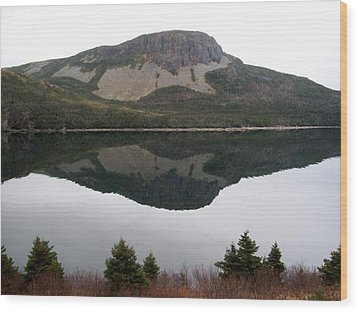 Wood Print featuring the photograph Sugarloaf Hill Reflections by Barbara Griffin