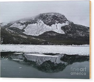 Wood Print featuring the photograph Sugarloaf Hill Reflections In Winter by Barbara Griffin