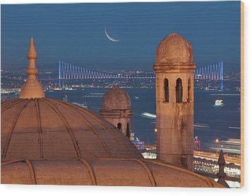 Suleymaniye Wood Print by Salvator Barki