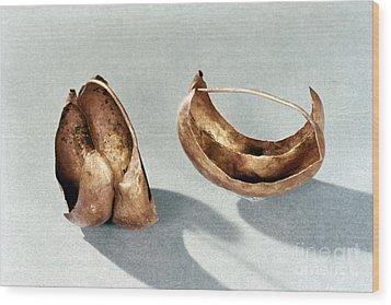 Sumerian Jewelry Wood Print by Granger