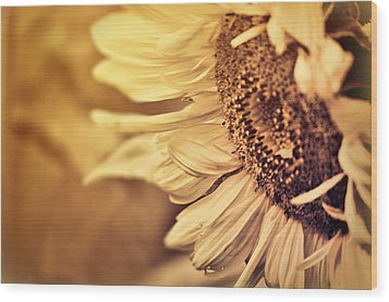 Wood Print featuring the photograph Summer Afternoon by Douglas MooreZart