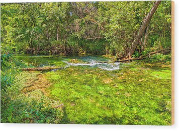 Wood Print featuring the photograph Summer At Alley Springs by John M Bailey