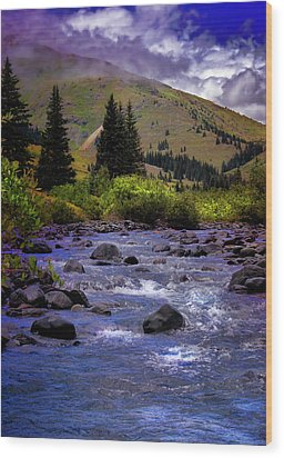 Wood Print featuring the photograph Summer At The Animas River by Ellen Heaverlo