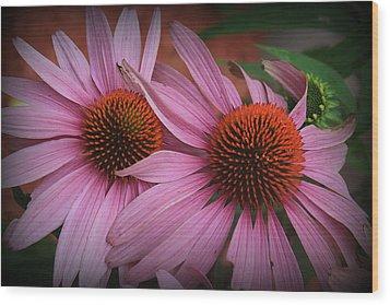 Summer Beauties - Coneflowers Wood Print
