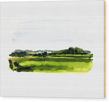 Summer Bog At Marstons Mills Wood Print by Paul Gaj