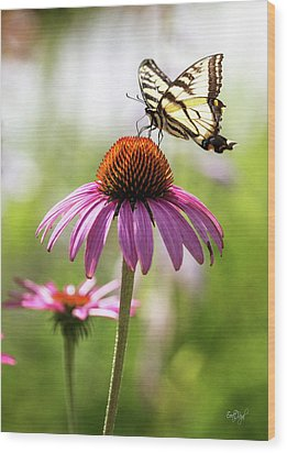 Wood Print featuring the photograph Summer Colors by Everet Regal