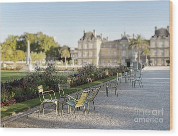 Summer Day Out At The Luxembourg Garden Wood Print by Ivy Ho