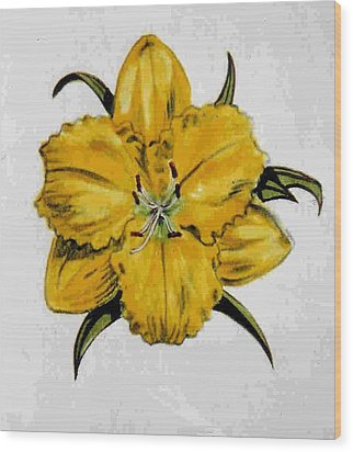 Summer Daylily Wood Print by Dy Witt