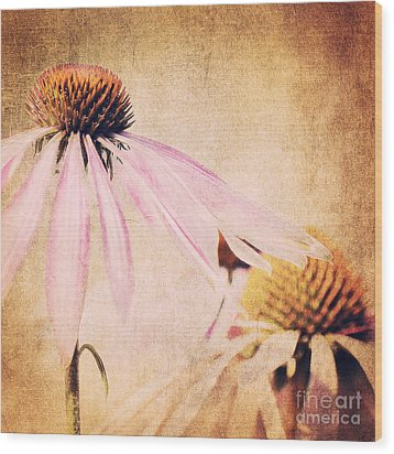Summer Feeling Wood Print by Angela Doelling AD DESIGN Photo and PhotoArt