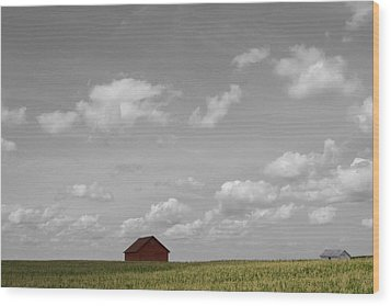 Summer Fields II Wood Print