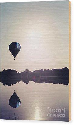 Summer Flight Wood Print by Stephanie Frey