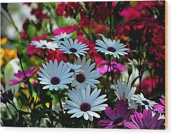 Summer Flowers Wood Print