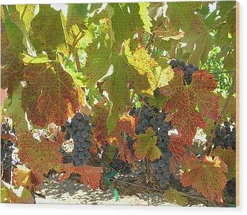 Summer Grapes Wood Print by Bonnie Muir