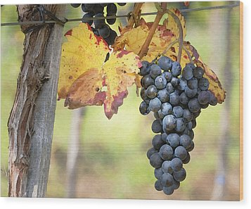 Summer Grapes Wood Print by Sharon Foster
