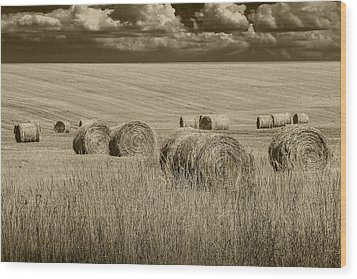 Summer Harvest Field With Hay Bales In Sepia Wood Print by Randall Nyhof