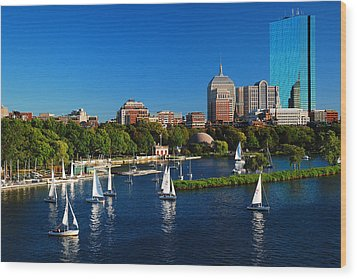 Wood Print featuring the photograph Summer In Boston by James Kirkikis
