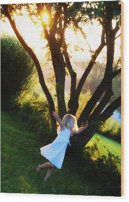 Summer Joy Wood Print by Cheryl Helms