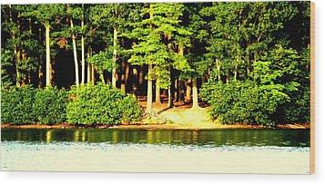 Summer Lake Wood Print by Aron Chervin