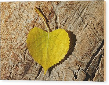 Summer Love Heart Shaped Leaf Wood Print by Tracie Kaska
