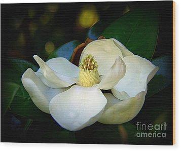 Summer Magnolia Wood Print