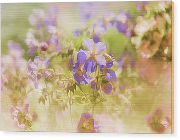 Wood Print featuring the photograph Summer Meadow by Elaine Manley