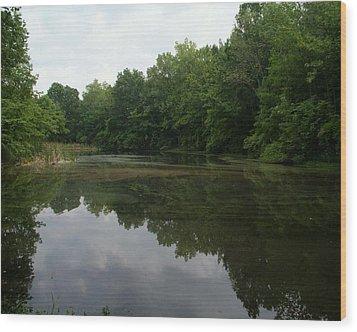 Summer Pond Wood Print