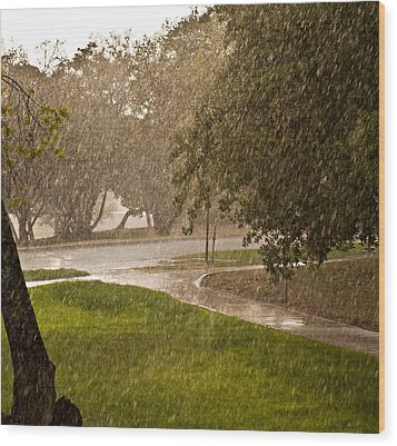 Wood Print featuring the photograph Summer Rain by Robert Harshman