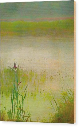 Summer Reeds Wood Print by Catherine Alfidi